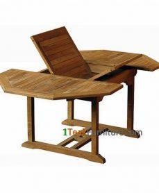 Teak Octagonal Extend Table 120-170 / 120
